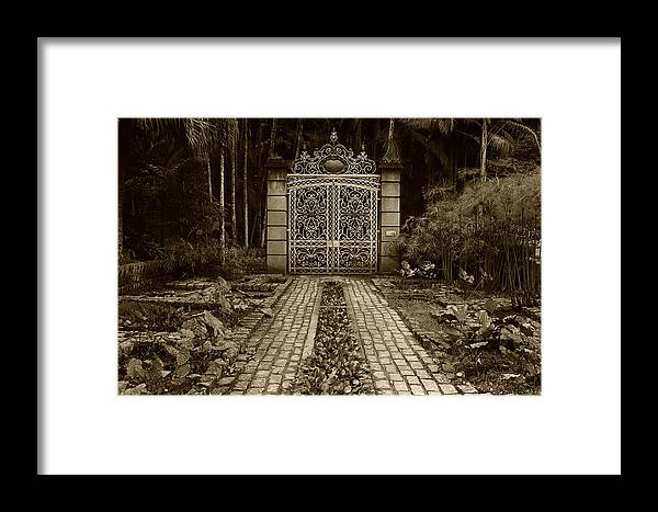 Gate Framed Print featuring the photograph Iron Gate by Amarildo Correa