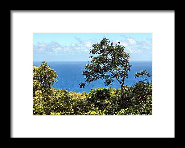 Landscape Framed Print featuring the photograph Island Breeze by Nicole I Hamilton