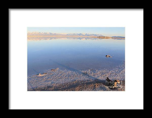 Nature Framed Print featuring the photograph Island In The Desert 3 by Tonya Hance