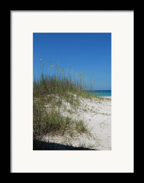 Beach Framed Print featuring the photograph Island Sea Oats by Lisa Gabrius