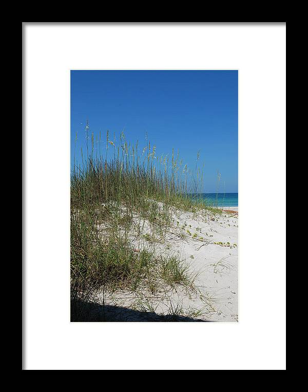 Beach Framed Print featuring the photograph Island Sea Oats by Lisa Gabrius