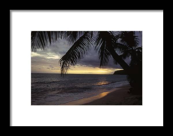 Palm Framed Print featuring the photograph Island Sunset by Mike Bambridge