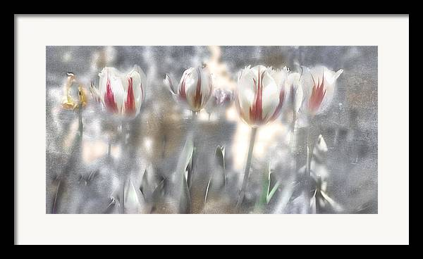 Flowers Framed Print featuring the photograph It Was A Beautiful Day by Inesa Kayuta