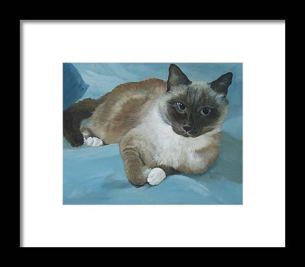 Cat Framed Print featuring the painting Itty Bitty Kitty by Audrie Sumner