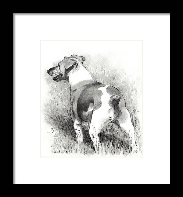Dog Framed Print featuring the drawing Jack Russell Terrier by Joyce Geleynse
