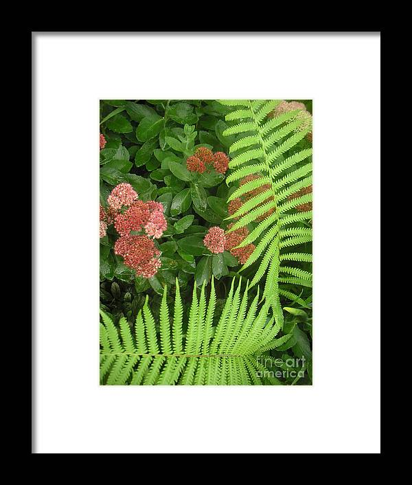 Nature Framed Print featuring the photograph Jacqueline's Garden - Camaraderie Of Textures Too by Lucyna A M Green