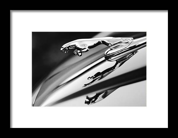Black And White Framed Print featuring the photograph Jaguar Car Hood Ornament Black And White by Jill Reger
