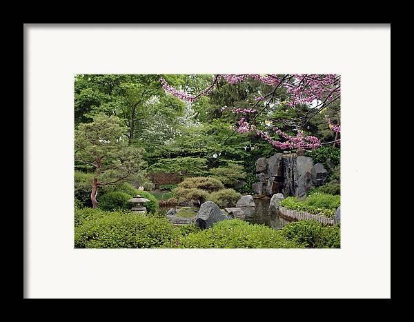 Japanese Garden Framed Print featuring the photograph Japanese Garden II by Kathy Schumann