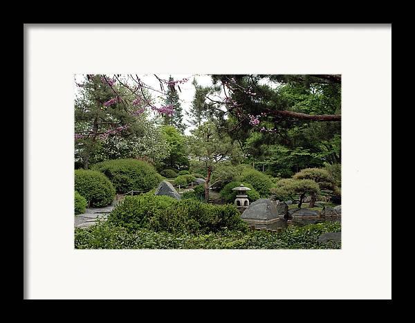 Japanese Garden Framed Print featuring the photograph Japanese Garden IIi by Kathy Schumann
