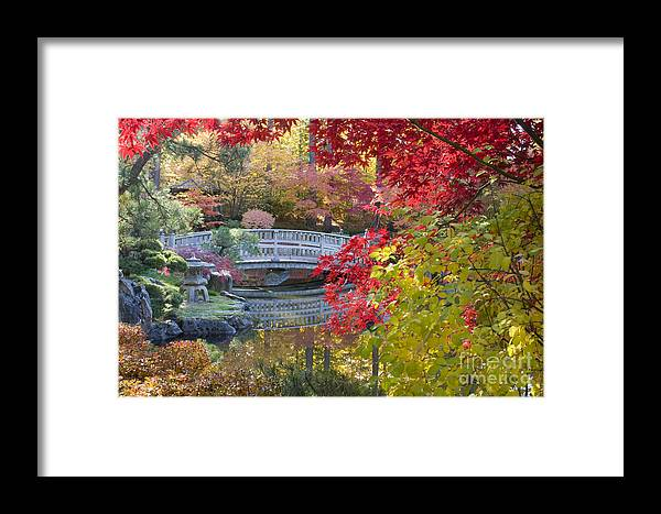 Gardens Framed Print featuring the photograph Japanese Gardens by Idaho Scenic Images Linda Lantzy