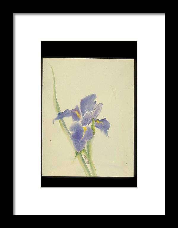 Watercolor Framed Print featuring the painting Japanese Iris by Nancy Ethiel