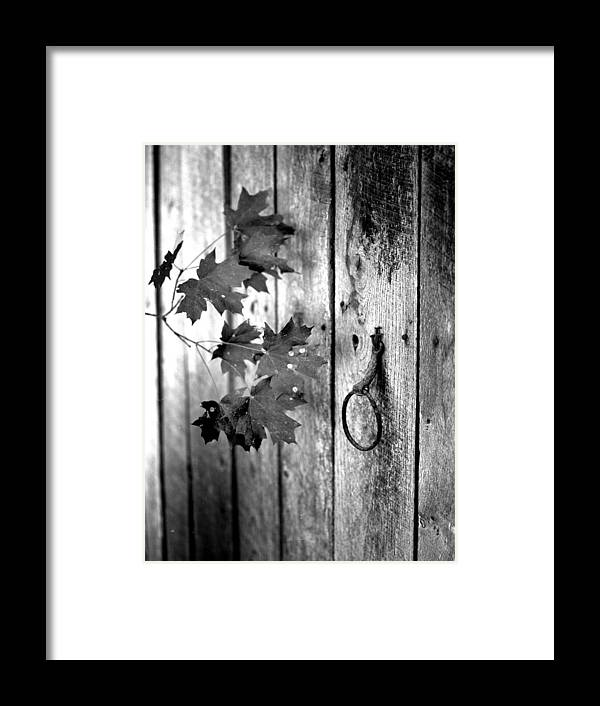 Framed Print featuring the photograph Japton door by Curtis J Neeley Jr