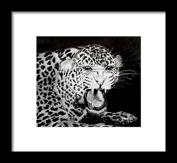 Original Drawing Framed Print featuring the drawing Jaquar II by Stan Hamilton