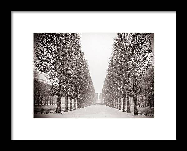 Jardin Du Luxembourg Framed Print featuring the photograph Jardin_du_luxembourg by Sophia Pagan