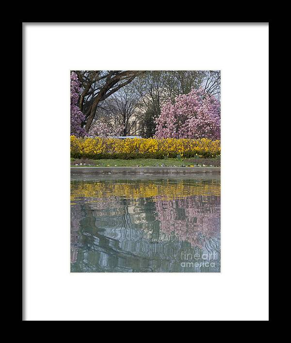 Jefferson Memorial Framed Print featuring the photograph Jefferson Memorial And A Reflecting Pond by Tim Grams