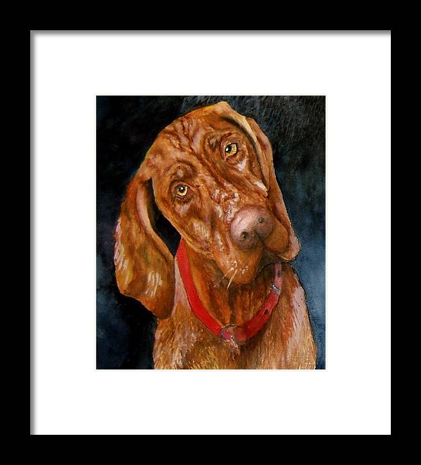 Vizsla Framed Print featuring the print Jesse The Vizsla by JoLyn Holladay
