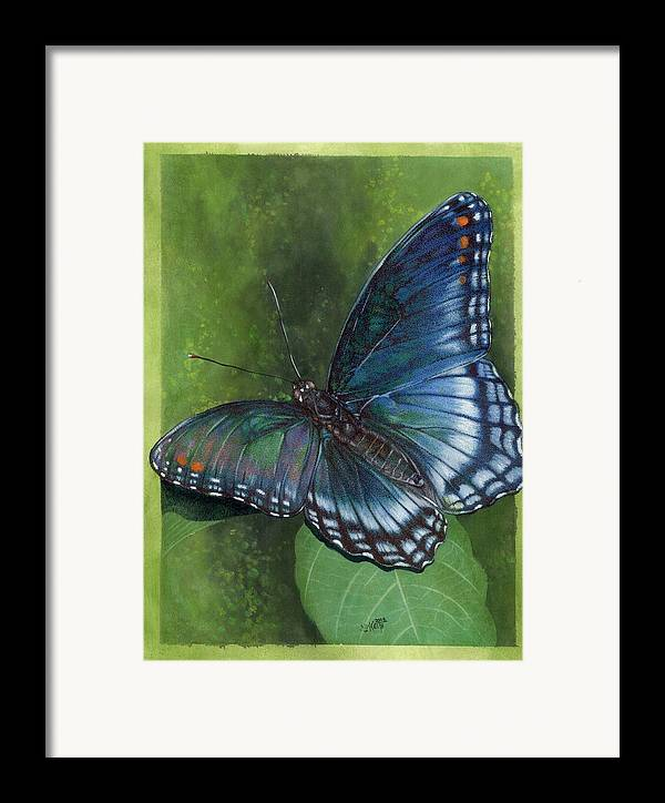 Insects Framed Print featuring the mixed media Jewel Tones by Barbara Keith