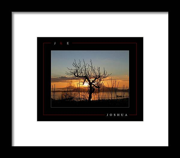 Tree Framed Print featuring the photograph Joshua by Jonathan Ellis Keys