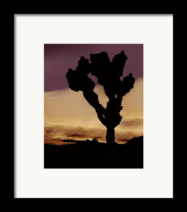 Framed Print featuring the photograph Joshua Tree Silo At Sunset by Curtis J Neeley Jr