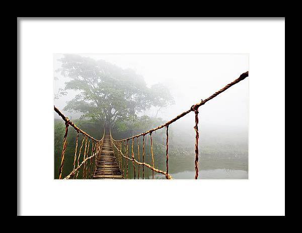 Rope Bridge Framed Print featuring the photograph Jungle Journey by Skip Nall