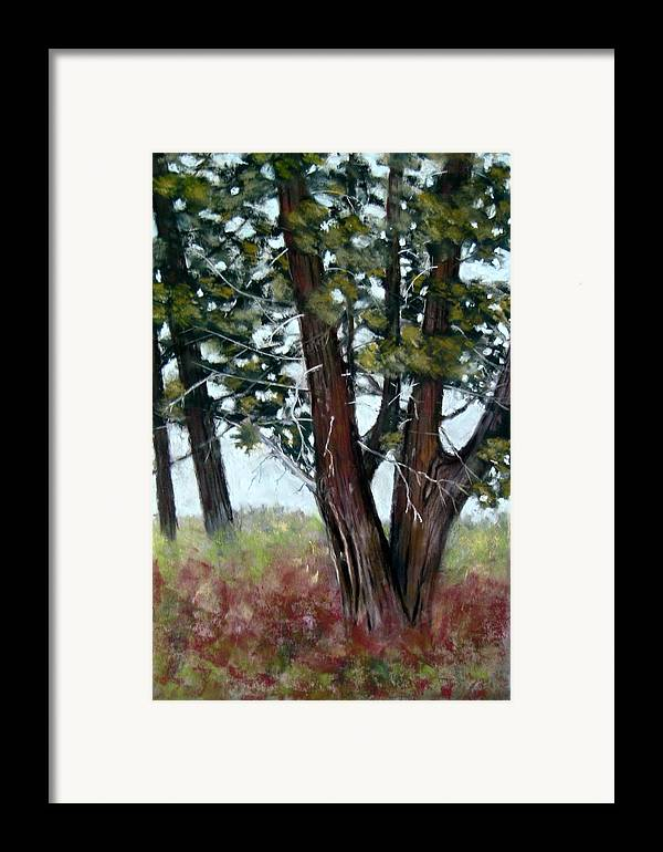 Landscape Framed Print featuring the painting Juniper by Carl Capps
