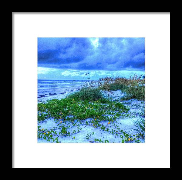Beach Framed Print featuring the photograph Just Beachy by Debbi Granruth