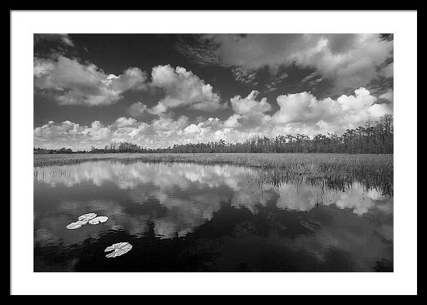 Just Breathe in Black and White by Debra and Dave Vanderlaan
