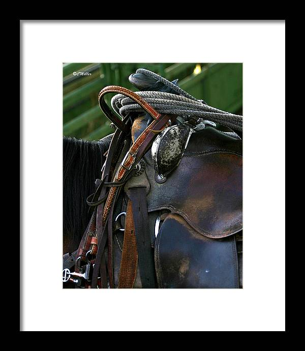 Rodeo Framed Print featuring the photograph Just Gettin Broke In.. by Carol Miller