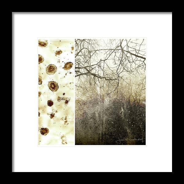 Trees Framed Print featuring the photograph Juxtae #17 by Joan Ladendorf