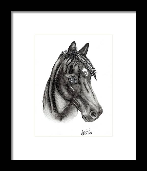 Kahnali Framed Print featuring the drawing Kahnali by Crystal Suppes