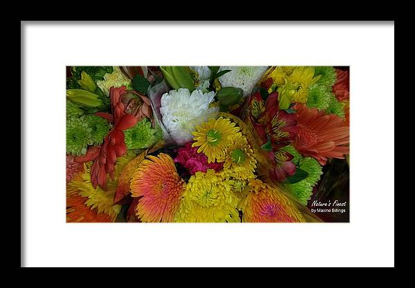 Flowers Framed Print featuring the photograph Kaleidoscope by Maxine Billings