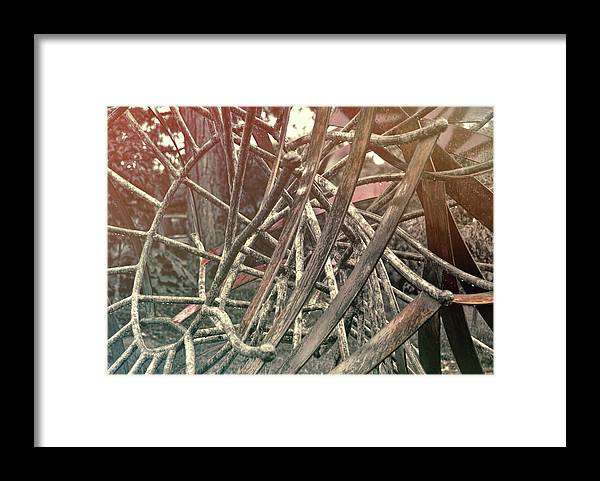 Kalish Framed Print featuring the photograph Kalish's Artwork by Jamart Photography