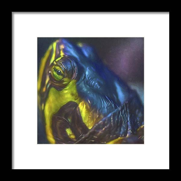 Petstagram Framed Print featuring the photograph Keep Your Head Up Says Tupac. Hey Bugs by David Haskett II