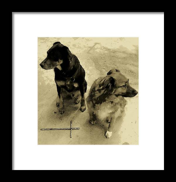 Dog Framed Print featuring the photograph Keeping Watch In Sepia Tone by Deborah Montana