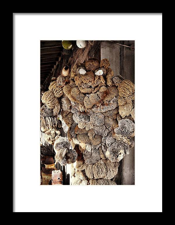Key Framed Print featuring the photograph Key Kritter by JAMART Photography