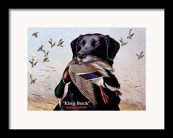 Dog Framed Print featuring the painting King Buck  1959 Federal Duck Stamp Artwork by Maynard Reece