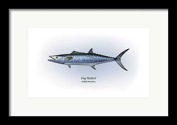 King Mackerel Framed Print featuring the painting King Mackerel by Ralph Martens