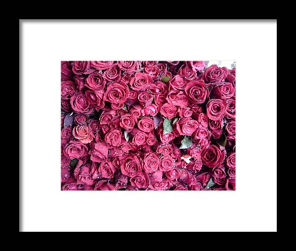 Of Course Roses Are King Of Flowers & When They Are In Bunch They Are Going To Rule Framed Print featuring the photograph King Of Flowers by Anil Bajpai