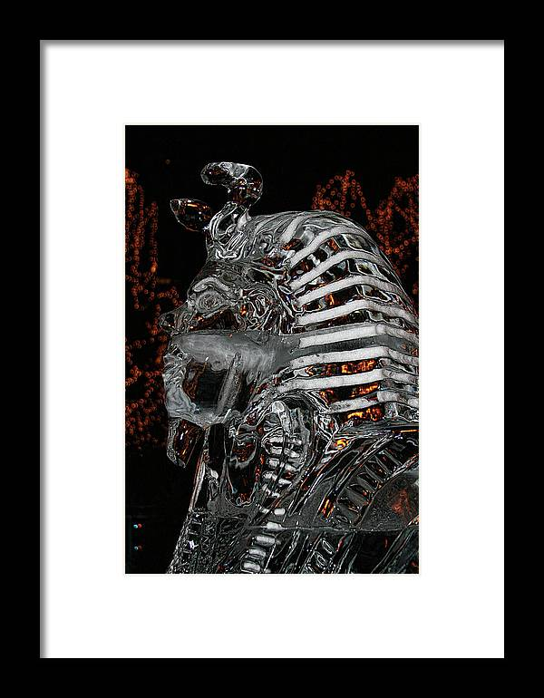 Framed Print featuring the photograph King Tut In Ice by Laurie Prentice