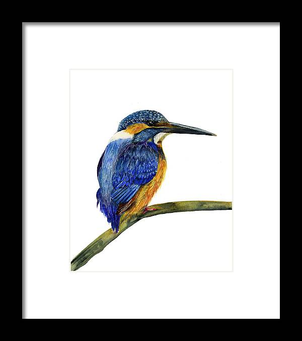 Kingfisher Framed Print featuring the painting Kingfisher by Alison Langridge