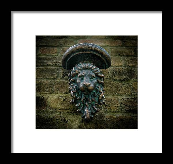 Lion Framed Print featuring the photograph King's Passage by RLS Artography