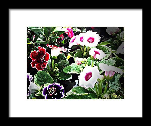 Flowers Framed Print featuring the digital art Kingwood Center 3 by Crystal Webb