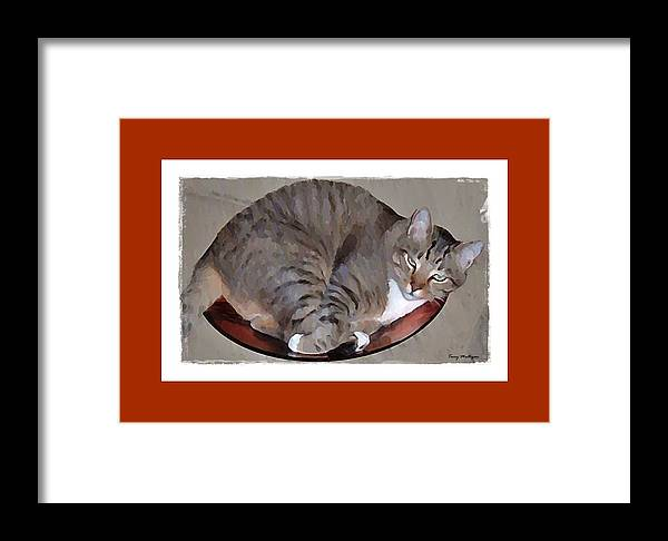 Kitty Framed Print featuring the digital art Kitty In A Bowl by Terry Mulligan