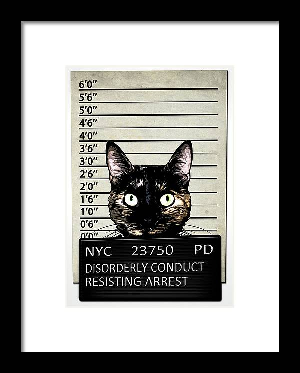 Cat Framed Print featuring the mixed media Kitty Mugshot by Nicklas Gustafsson