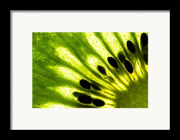 Abstract Framed Print featuring the photograph Kiwi by Gert Lavsen