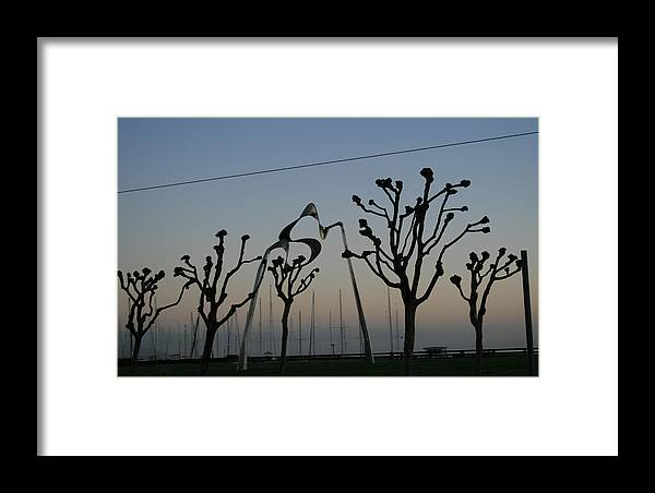 Knob Framed Print featuring the photograph Knobby Trees by Joshua Sunday