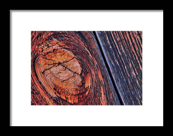 Knot Framed Print featuring the photograph Knot by Mike Flynn