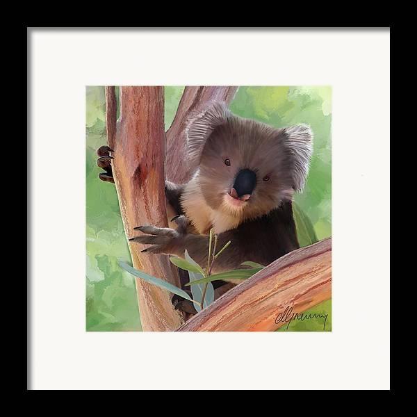 Koala Framed Print featuring the painting Koala Painting by Michael Greenaway