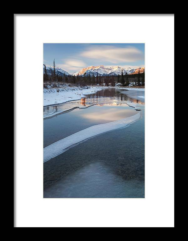 Kootenay Plains Framed Print featuring the photograph Kootenay Plains by Tasty Mountain Goodness