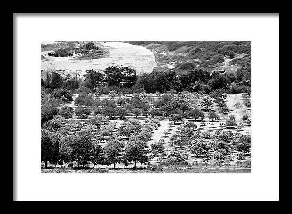 Farm Framed Print featuring the photograph Kourion Farm by John Rizzuto